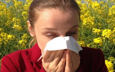 Allergies: The What? Why? and How?