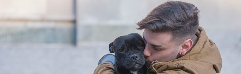 a pet sensitivity can be more prevalent in autumn