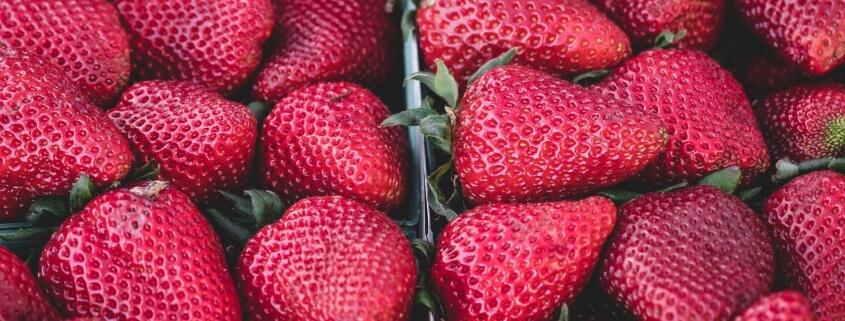 Understanding food sensitivities is important to your health
