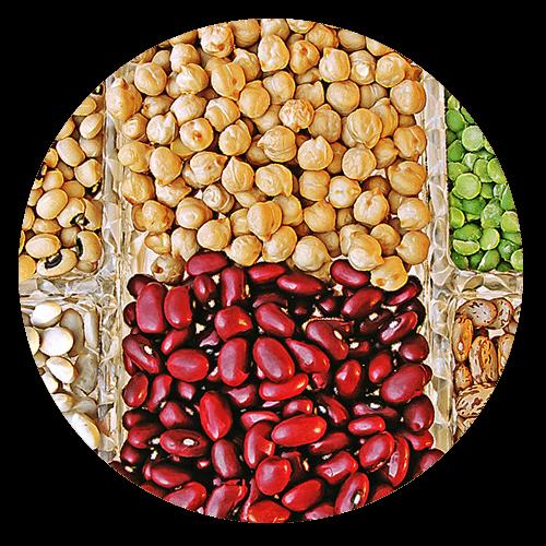 legumes - Gluten Intolerance