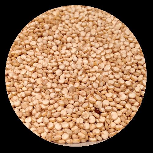 quinoa - Gluten Intolerance