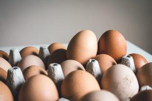 eggs common allergy