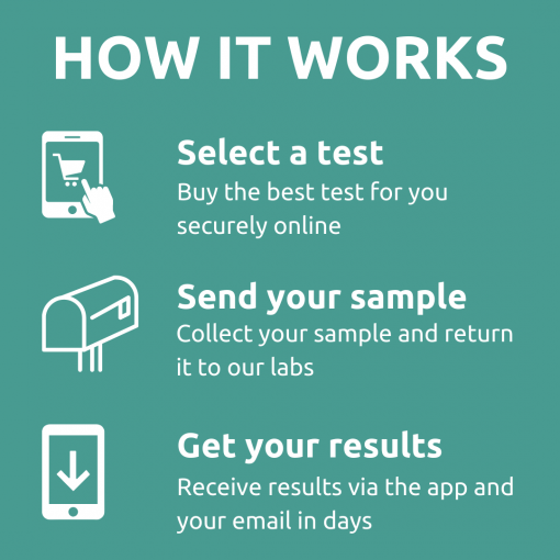 How allergy testing works